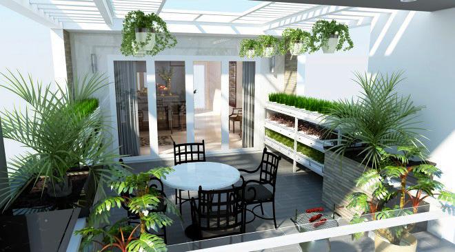 Sân thượng có thể trồng rau